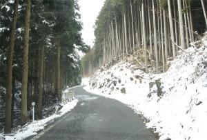 国道429雪道