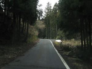 国道429青垣峠への道