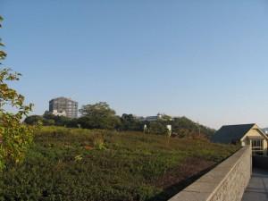 文学館から見た姫路城