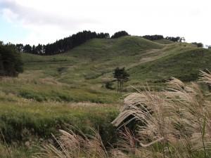 高原には早くもススキの穂が揺れる