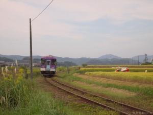 上りフラワ2000-2号