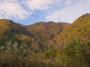 引原ダム上流音水渓谷周辺の紅葉