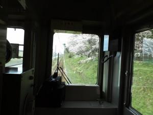 車内より加古川線板場の桜並木