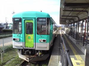フラワ2000-3新カラー