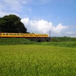 三岐鉄道北勢線3連めがね橋と列車