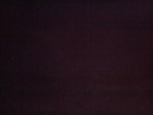 光はホタルで薄い光が線を引くのは飛んでいるホタルの軌跡