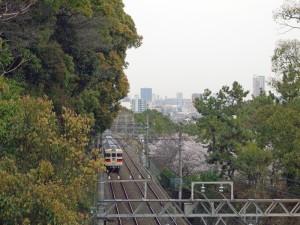 山陽5000系と須磨浦公園の桜