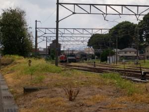 臨専用8785列車到着