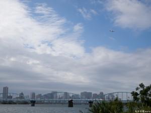 淀川から見る大阪都心とJAL機