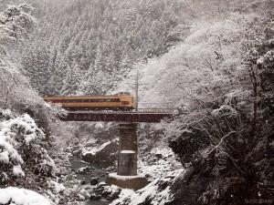 雪の川代渓谷こうのとり14号140119