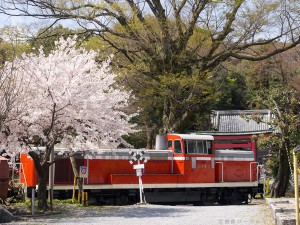 桜と西濃DE10