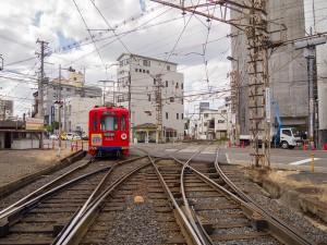 阪堺線に入る505号