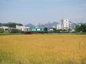 麦畑と加古川線125系