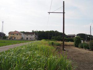 武蔵野の森に吸い込まれる安比奈線