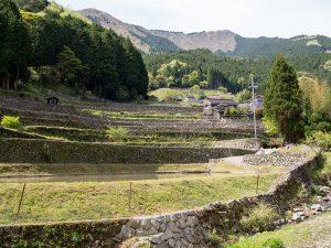 岩座神棚田と千ヶ峰